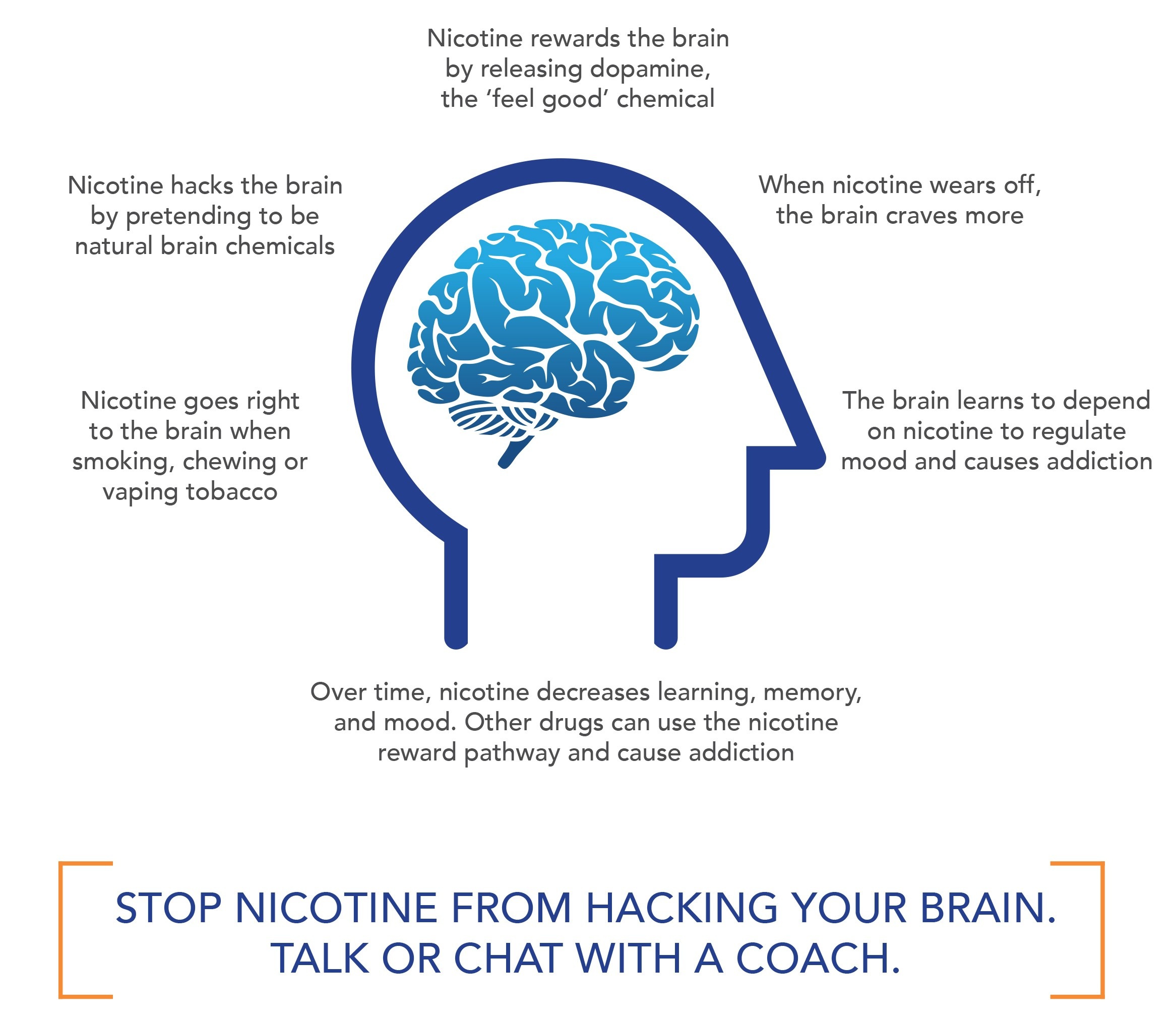 How Nicotine Works